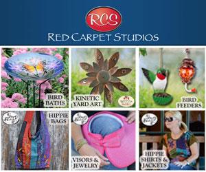 Red Carpet Studios 300 x 250